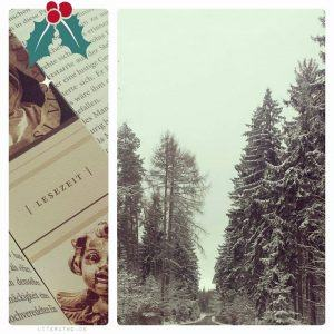 Lauras Verschwinden im Schnee ~ Pasi Ilmari Jääskeläinen