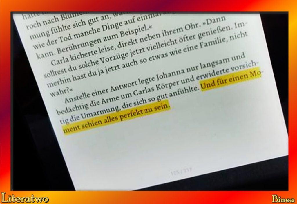 Literatwo: Das Mädchen mit den Engelshänden ~ Anne Lück