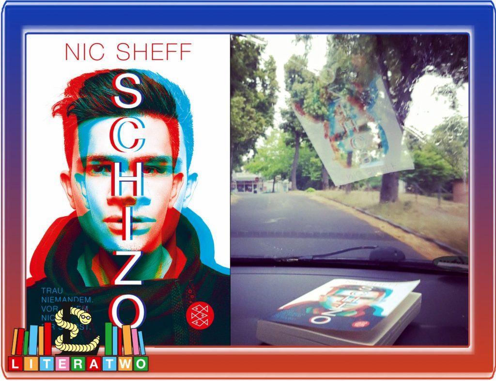 Schizo ~ Nic Sheff